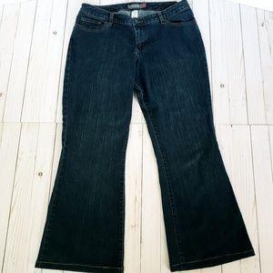 Lane Bryant Venezia Stretch Flare Jeans Size 1(14)
